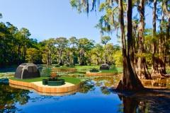 camping-swampy