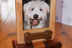 Josh-Skipper-frame-2