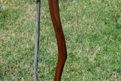 Swerve cane in walnut, sapele, zebrawood and bubinga. Design follows grain in walnut.